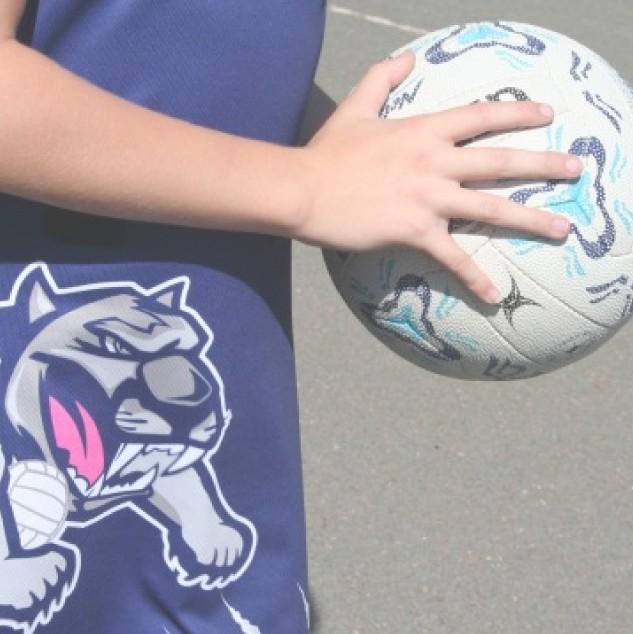 One Sport Custom Made Netball Teamwear, Netball Dress, shorts and socks
